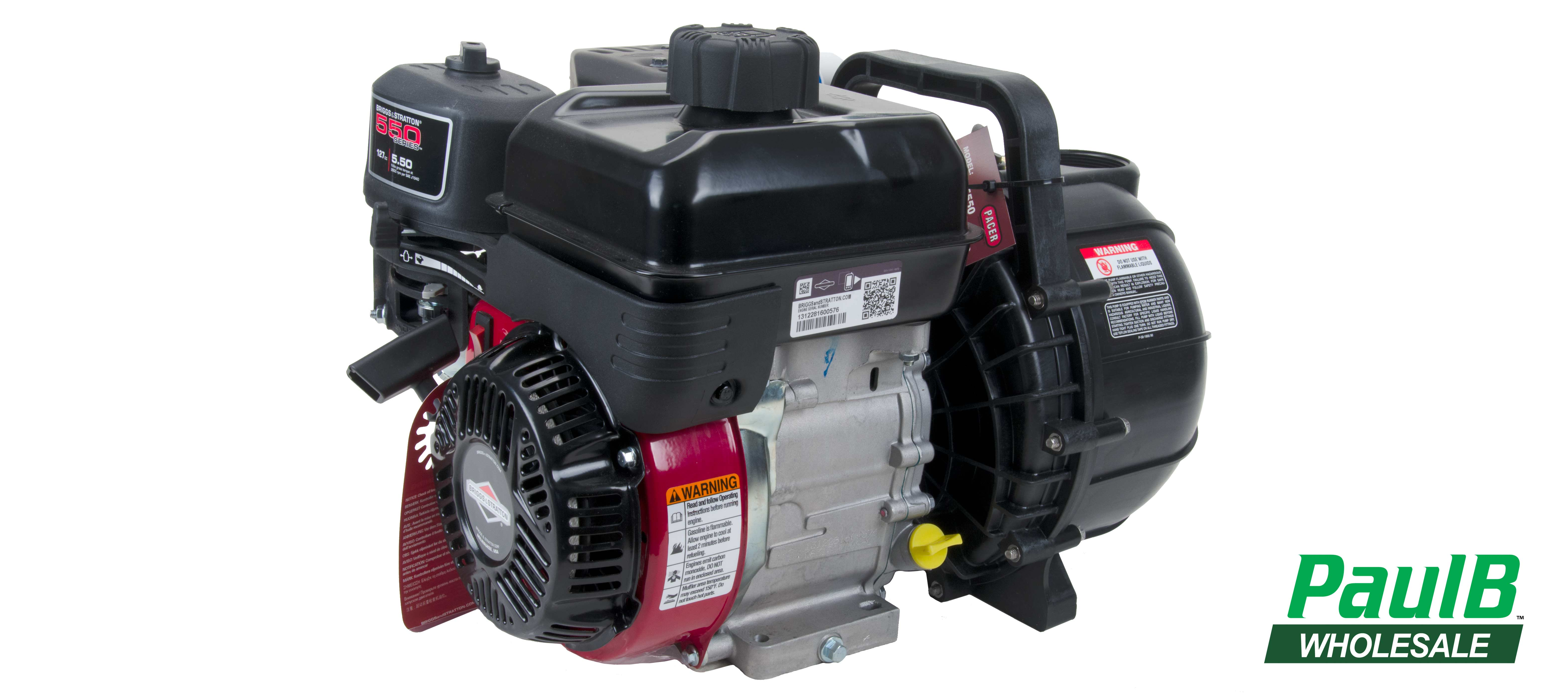 PaulB Wholesale Briggs and Stratton pacer pump